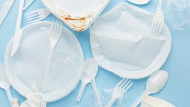 Photo of Canadá e EUA assinam acordo de exportações de resíduos plásticos