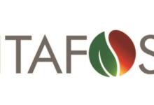 Photo of Itafos retoma planta de ácido sulfúrico em Arraias, Tocantins